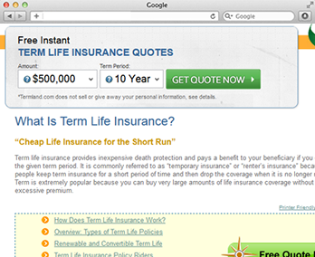 Life Insurance Quote No Personal Information Magnificent Bringing Online A Term Life Insurance Quotes Website