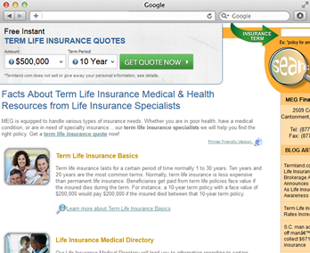 Term Quotes Life Insurance Classy Bringing Online A Term Life Insurance Quotes Website